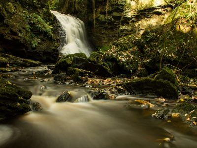the stream at Hareshaw Linn