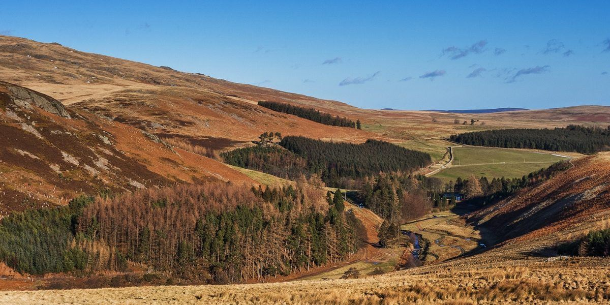 Ritto Hill and Linhope in the Breamish Valley