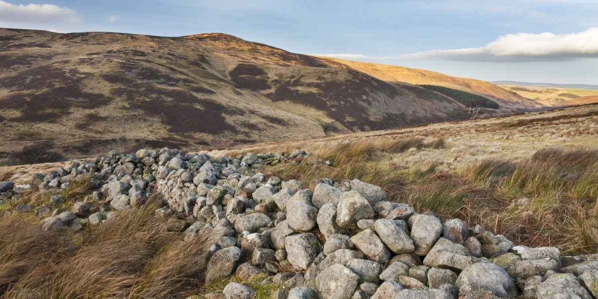Line of stones near to Housey Crag, pointing across the Harthope Valley towards the slopes of Cold Law,; part our our varied Geodiversity.