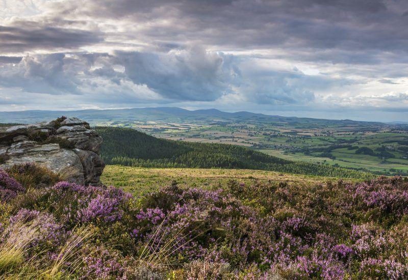 Get Visitor INformation on places such as the Simonside Hills in Northumberland National Paek