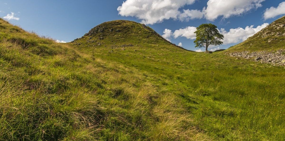 'Sycamore Gap' on Hadrian's Wall in the Northumberland National Park, England