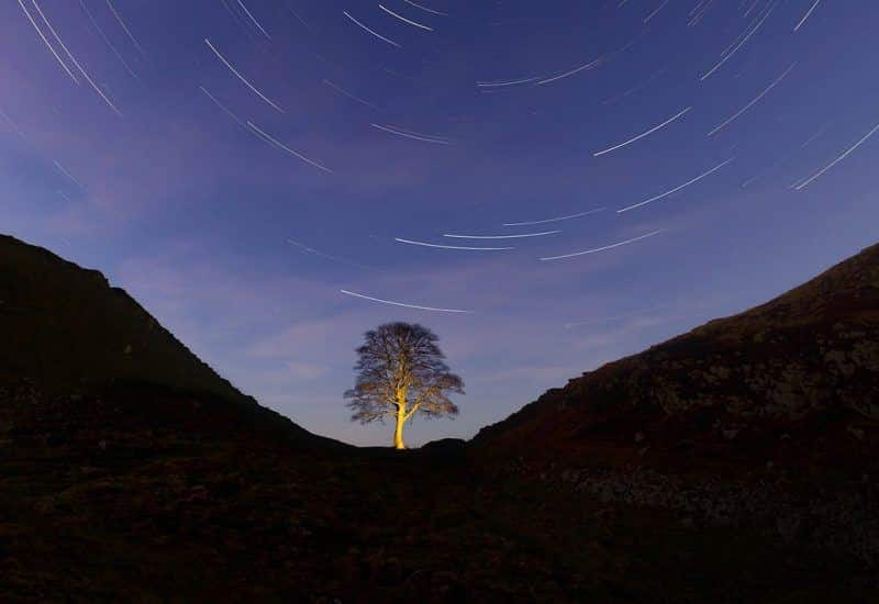 Sycamore Gap at night part of the Northumberland International Dark Sky Park