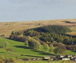 Greenhaugh area, autumn,