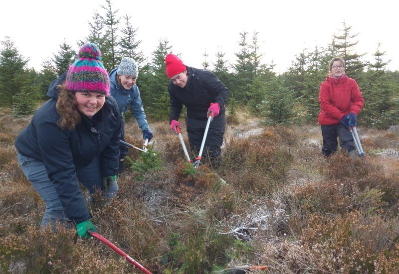 Leeds University Conservation Volunteers-Dec2017