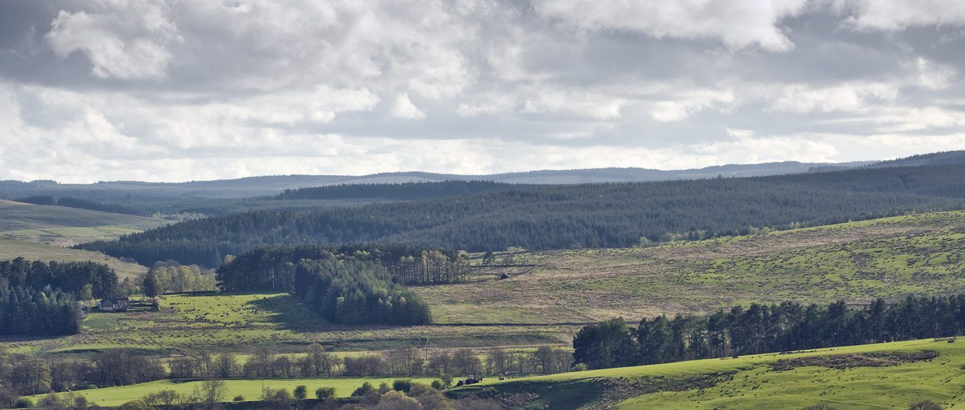 A view of Tarset in Northumberland