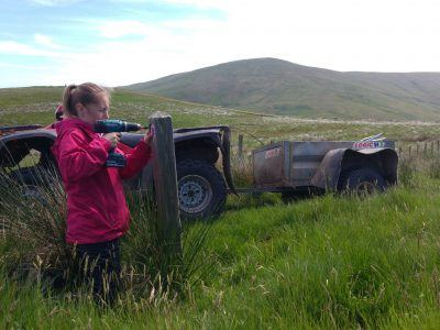 Young volunteer drilling a finger post in the national park