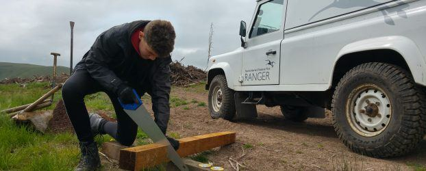 Young Volunteer working with our Ranger Team