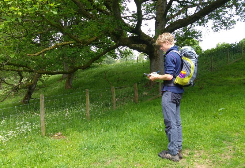 A young volunteer conducts a tree survey in the national park