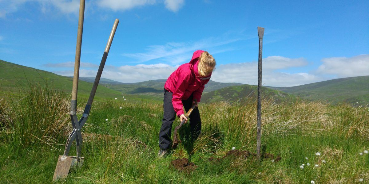 A young volunteer digging in the national park