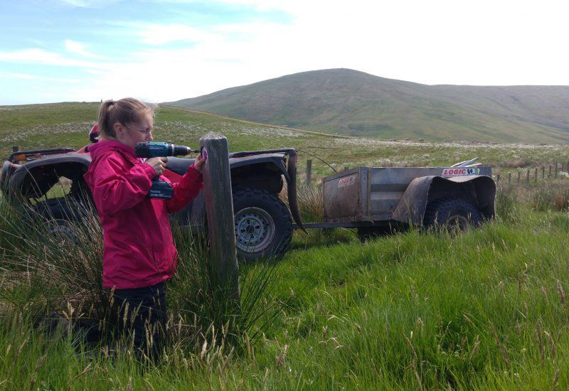 A young volunteer drilling a finger post in the national park