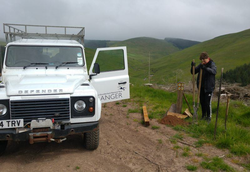 A young volunteers digging in the group close to a national park ranger vehicle