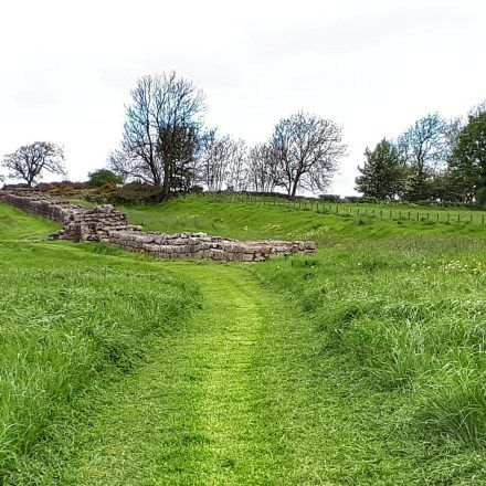 a grassy path on the Hadrian's Wall Trail for walkers to use