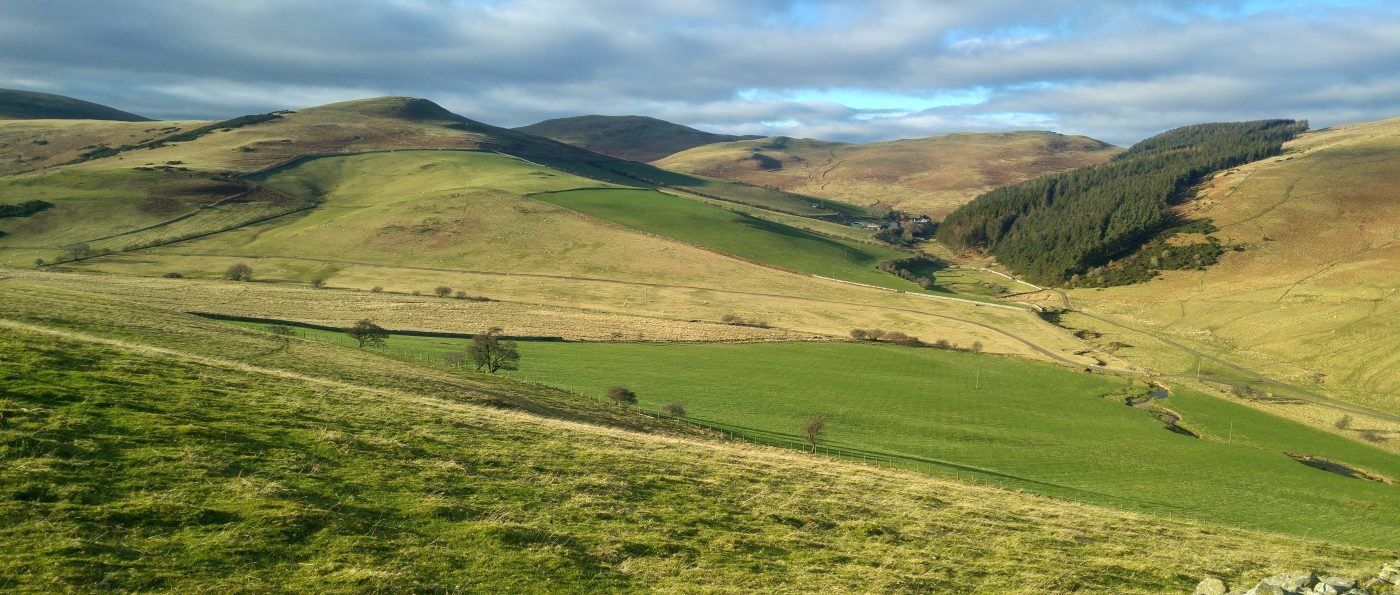 A view of the Cheviot Hills