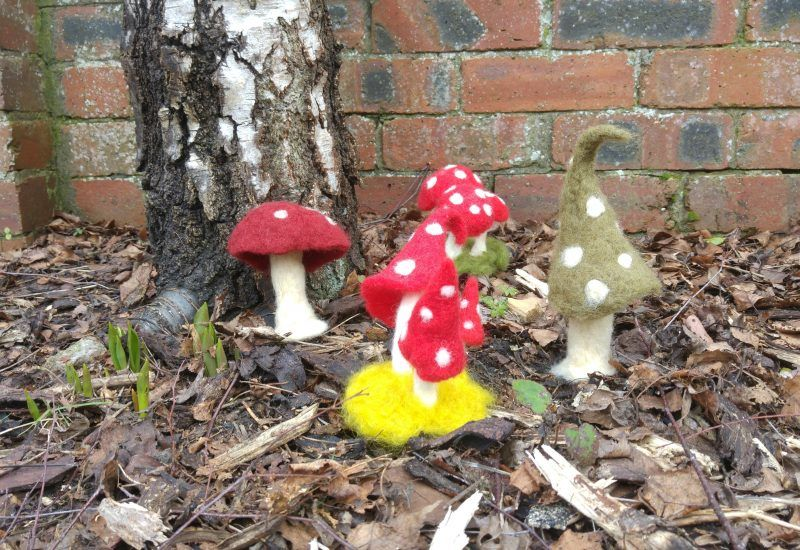 A group of colourful mushrooms hand made from felt.