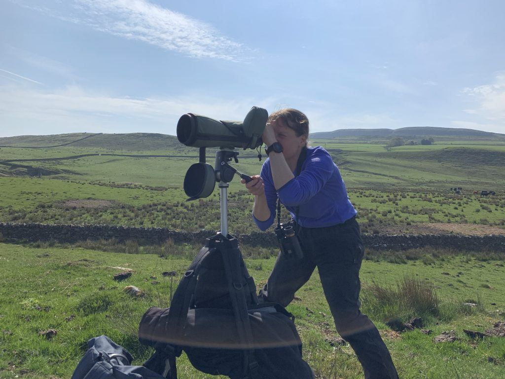 National Park Officer Abi conducting a bird survey on Hadrian's Wall