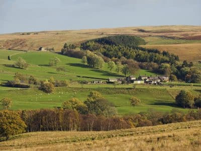 Houses in Greenhaugh in the Northumberland National Park
